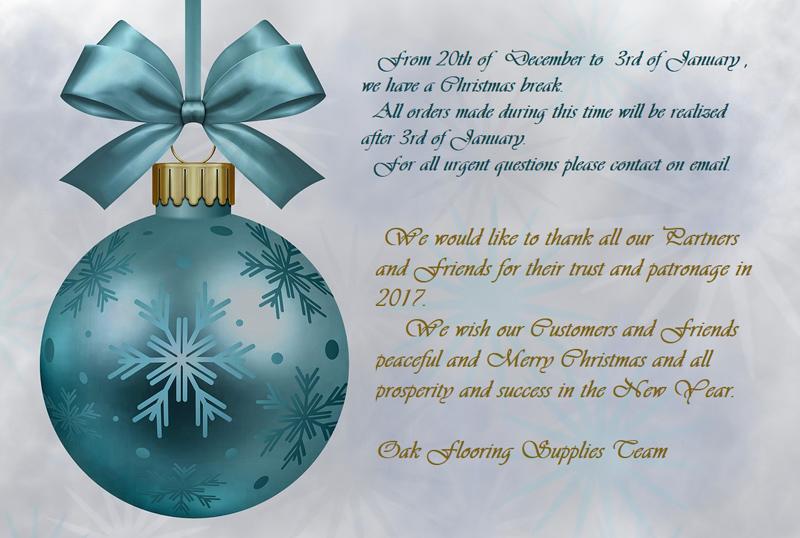 Merry Christmas - Christmas break
